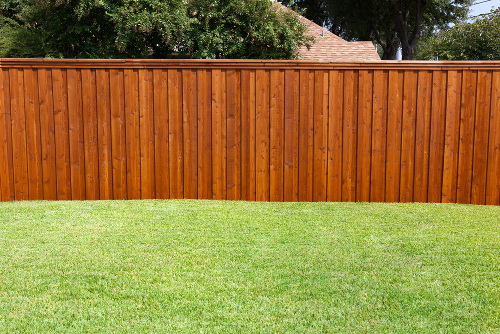 how-to-build-a-privacy-fence.jpg